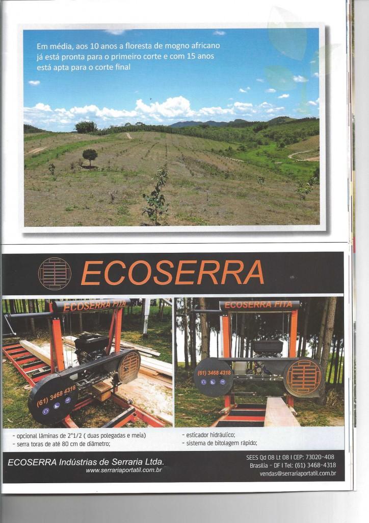 REVISTA REFERENCIA FLORESTAL - MOGNO AFRICANO-5